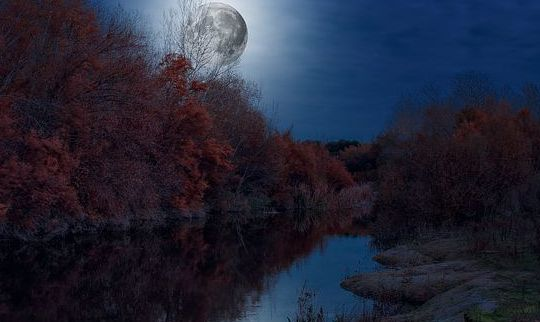 Анализ стихотворения Есенина Вечером синим вечером лунным