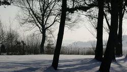 Сыплет черемуха снегом анализ thumbnail