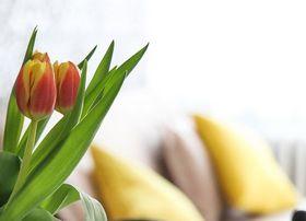 Стих о засохшем цветке